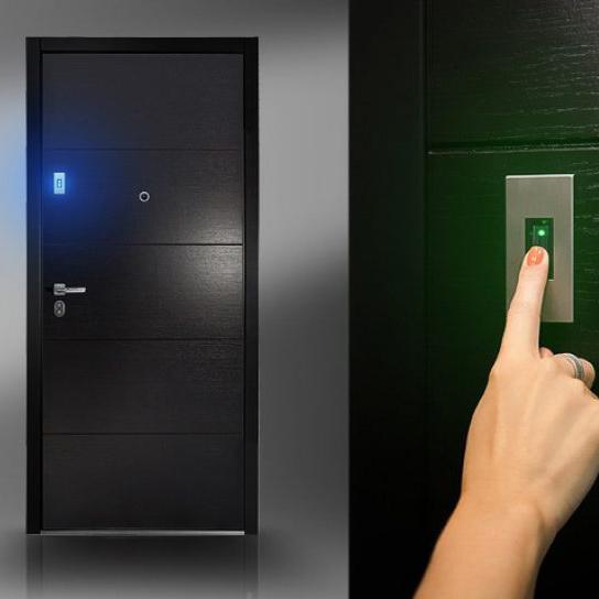 SMART двери Stardis – будущее в настоящем